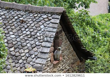 eski · gri · çatı · arka · plan - stok fotoğraf © elxeneize
