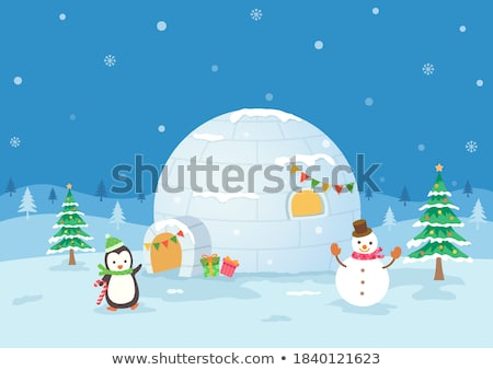 Igloo with penguin Stock photo © zzve