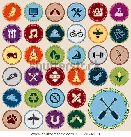 Scouting badges Stock photo © mikemcd