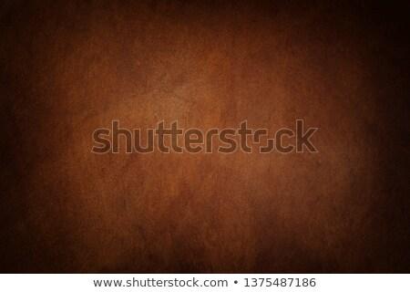 Luxury leather background Stock photo © IMaster
