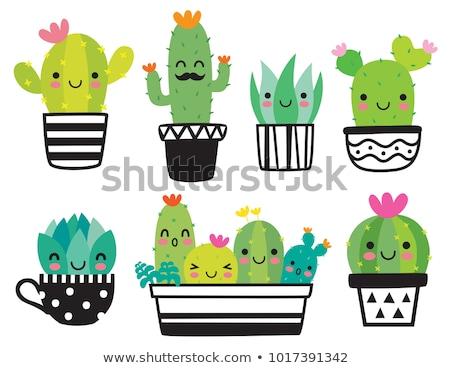 desenho · animado · cacto · deserto · verde · isolado · ilustração - foto stock © blamb