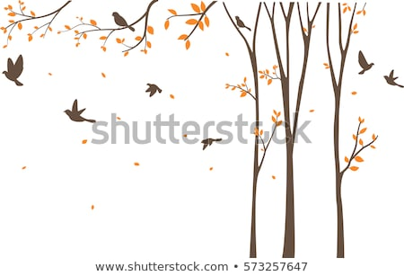 Tree With Birds And Birdcage Vector