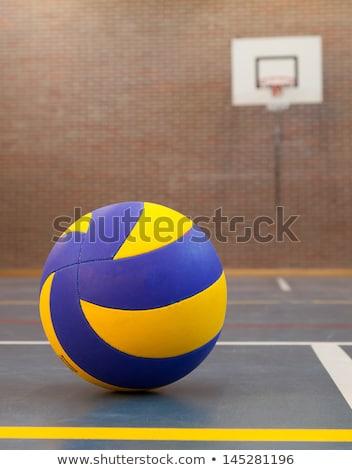 Bleu jaune balle tribunal pause temps Photo stock © michaklootwijk