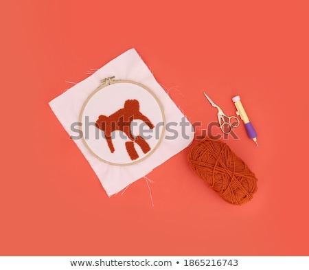 Procede werken stuk borduurwerk kruis Stockfoto © dashapetrenko