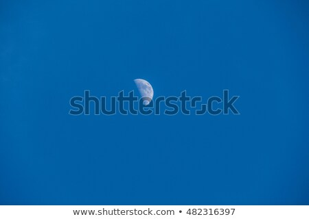 Right half moon in the silent day sky Stock photo © shihina
