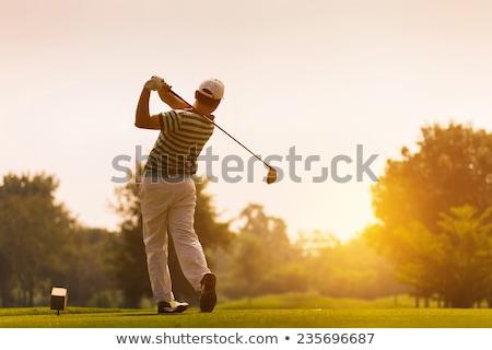 Golf zonsondergang man spelen vlag leuk Stockfoto © adrenalina