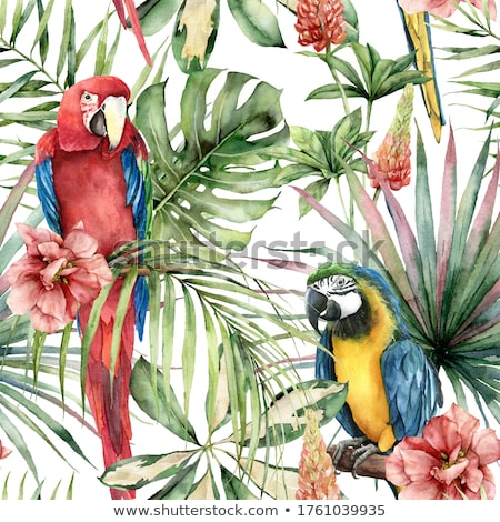 verde · papagaio · colorido · amarelo · sessão · ramo - foto stock © jancaj