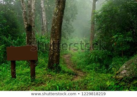 Natuur parcours teken meer berg reizen Stockfoto © Hofmeester