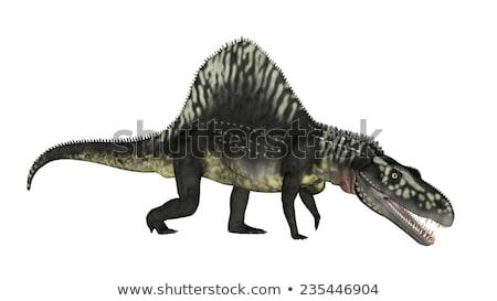 恐竜 3dのレンダリング 立って アップ 開口部 白 ストックフォト © Elenarts