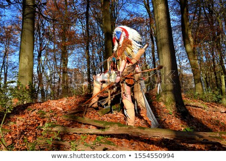 woodland hunter woman with bow and arrow Stock photo © godfer
