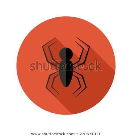 Halloween korkutucu örümcek daire ikon kırmızı Stok fotoğraf © Anna_leni