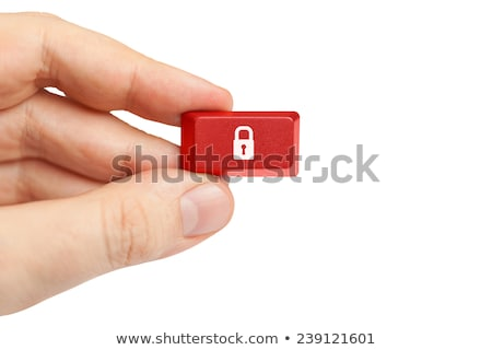 a keyboard with a red button   privacy stock photo © zerbor