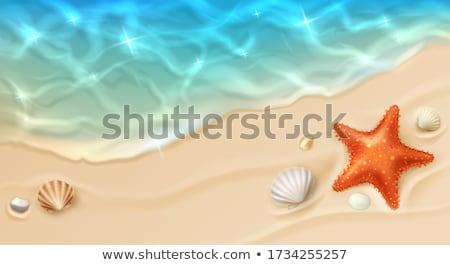 Hullámok homokos tengerpart csobbanás Zakynthos Görögország sziget Stock fotó © sirylok