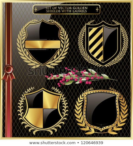 Set of emblems, crests, shields and scrolls. Stock photo © Mr_Vector