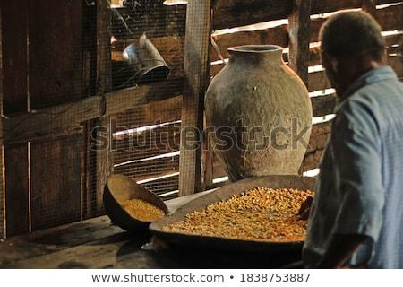 Delicious tray of cooked corncobs Stock photo © ozgur