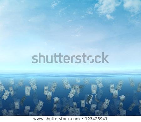 dollar under water stock photo © get4net