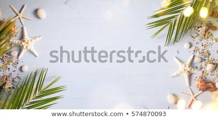 Smartphone hout zee zand zeester schelpen Stockfoto © karandaev