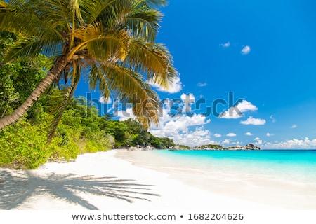 Sand on beach at Similan island in Thailand Stock photo © Yongkiet