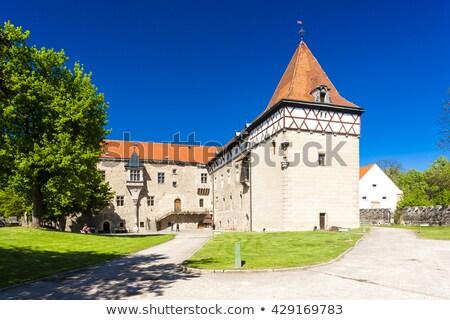Pałac Czechy podróży zamek architektury Europie Zdjęcia stock © phbcz