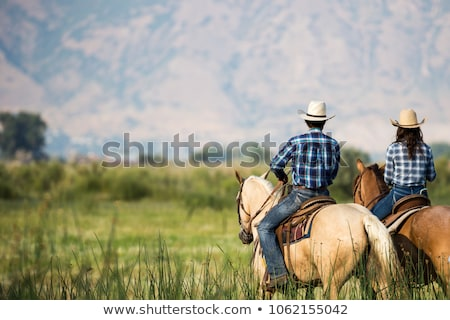 couple of cowboys and horses stock photo © adrenalina