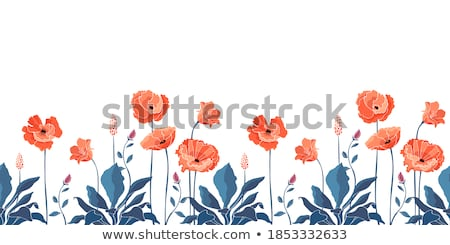 A colourful floral border Stock photo © bluering