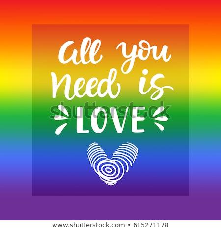 grunge · szivárvány · zászló · homoszexuális · büszkeség · stílus - stock fotó © evgeny89
