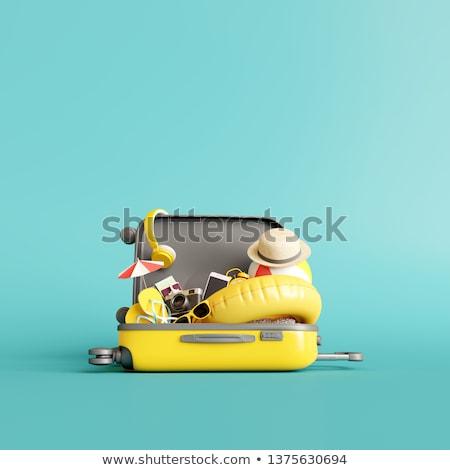 Equipaje ilustración vacaciones de verano estilo diseno Foto stock © robuart