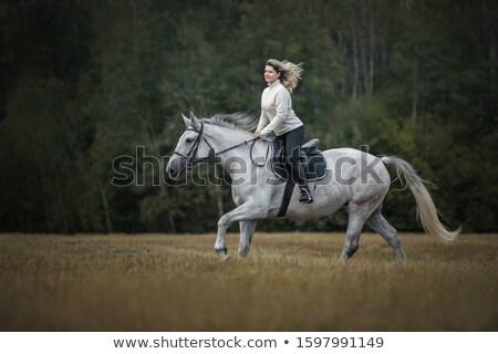 Fiatal fiatal nő western stílus lány divat Stock fotó © user_9834712