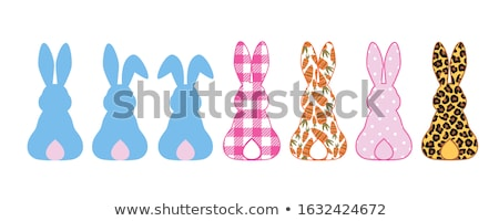 bunnies Stock photo © cundm