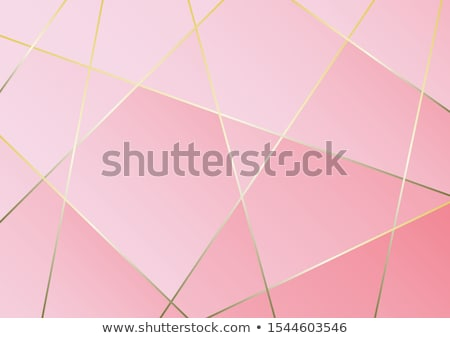 pink abstract polygonal business card vector design illustration Stock photo © SArts