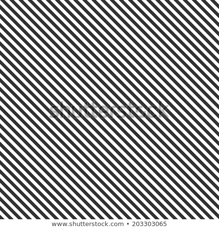 Vector Black White Diagonal Lines Geometric Seamless Pattern  Stock photo © Samolevsky