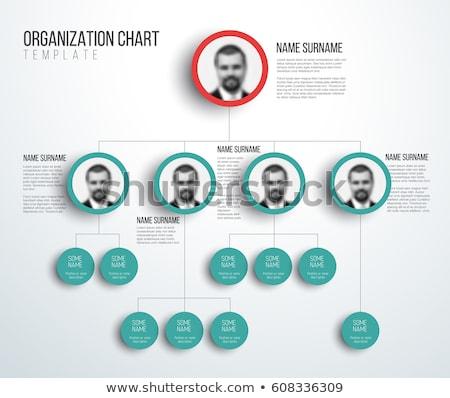 empresarial · jerarquía · tabla · personas · negocios · árbol - foto stock © orson