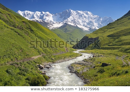 Summer landscape with a mountain river in Svaneti Stock photo © Kotenko