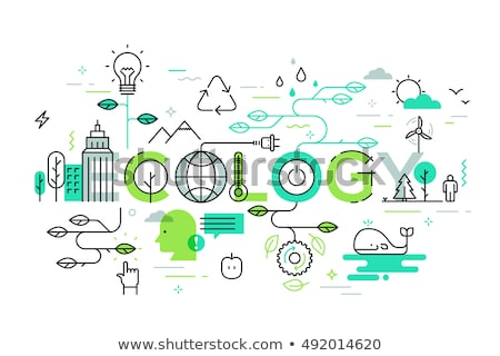 infographic template eco bulb light leaf icon stock photo © rwgusev