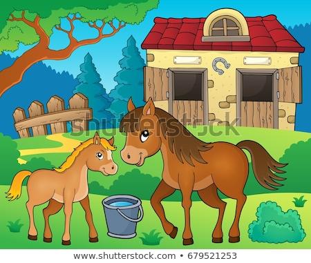Cavalo tópico imagem feliz arte verão Foto stock © clairev
