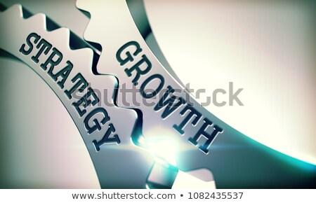 crecimiento · estrategia · mecanismo · metálico · Cog · artes - foto stock © tashatuvango