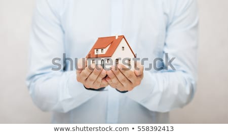 concept of  insurance home Stock photo © Olena