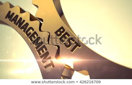 Best Solution on Golden Metallic Gears. 3D Illustration. Stock photo © tashatuvango