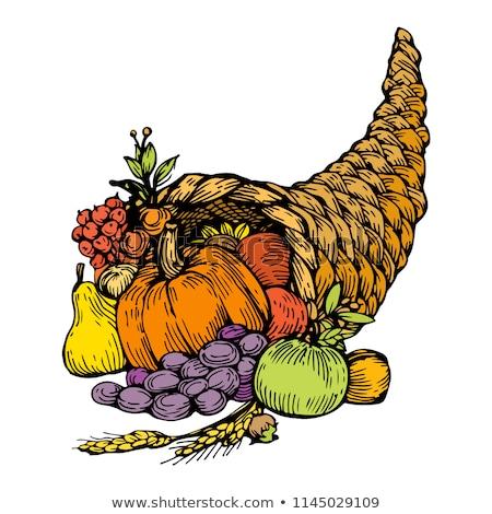 Thanksgiving Horn of Plenty Stock photo © milsiart