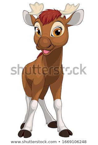 cute forest animal friendly moose with big horns stock photo © marysan