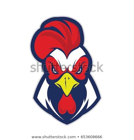 鶏 オンドリ 頭 ロゴ ベクトル シンボル ストックフォト © blaskorizov