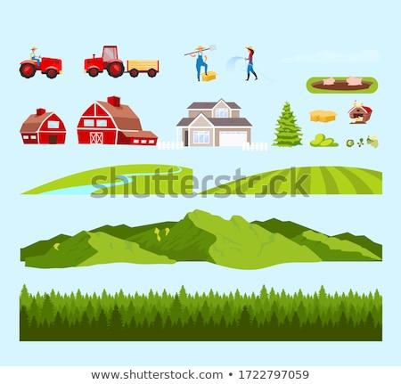 A simple rural village Stock photo © colematt