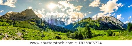 Madeira cabine colina ilustração paisagem luz Foto stock © colematt