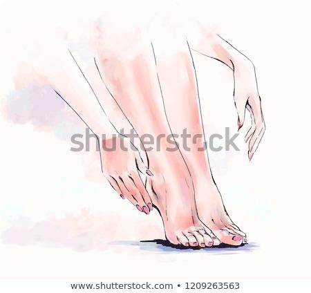 Spa Salon Wax Epilation on Legs Pedicure Vector Stock photo © robuart