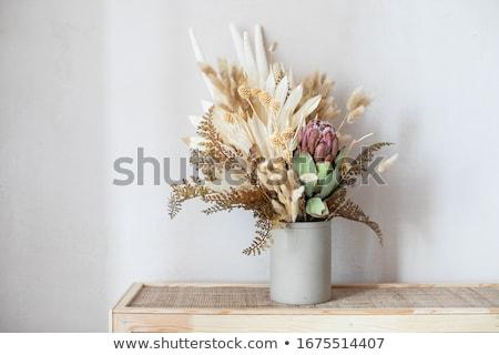 Trocken Blume Anordnung Holz Vase vertikalen Stock foto © amok