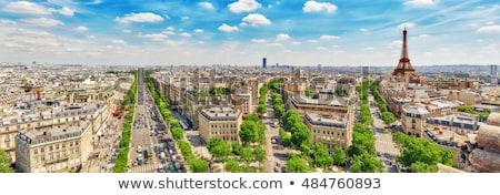 panorama · Parijs · Frankrijk · Eiffeltoren · vogels · oog - stockfoto © artjazz