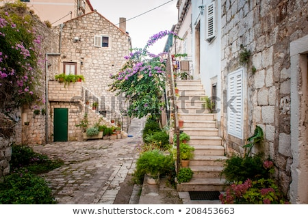 old stone street of ston and historic walls view stock photo © xbrchx