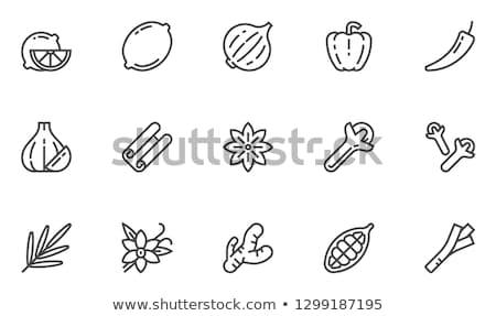 Sarımsak ikon gölge yansıma dizayn gıda Stok fotoğraf © angelp