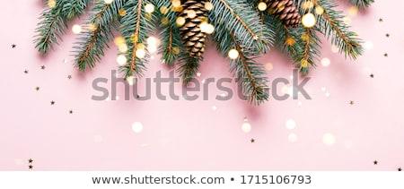 Pastel bokeh luces vector feliz Foto stock © balasoiu