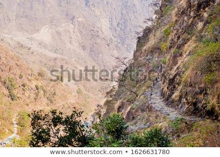 Kép trekking hegyek kirándulás mászik utazás Stock fotó © shai_halud